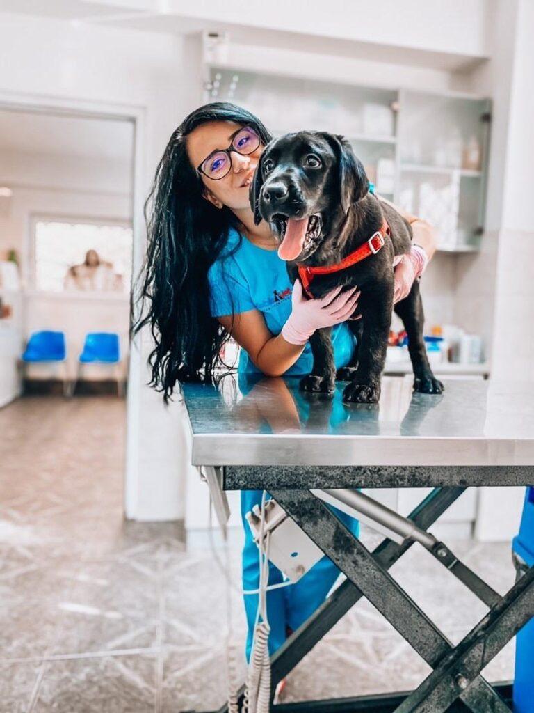 cărți despre câini, Carmen Totolici, animale de companie