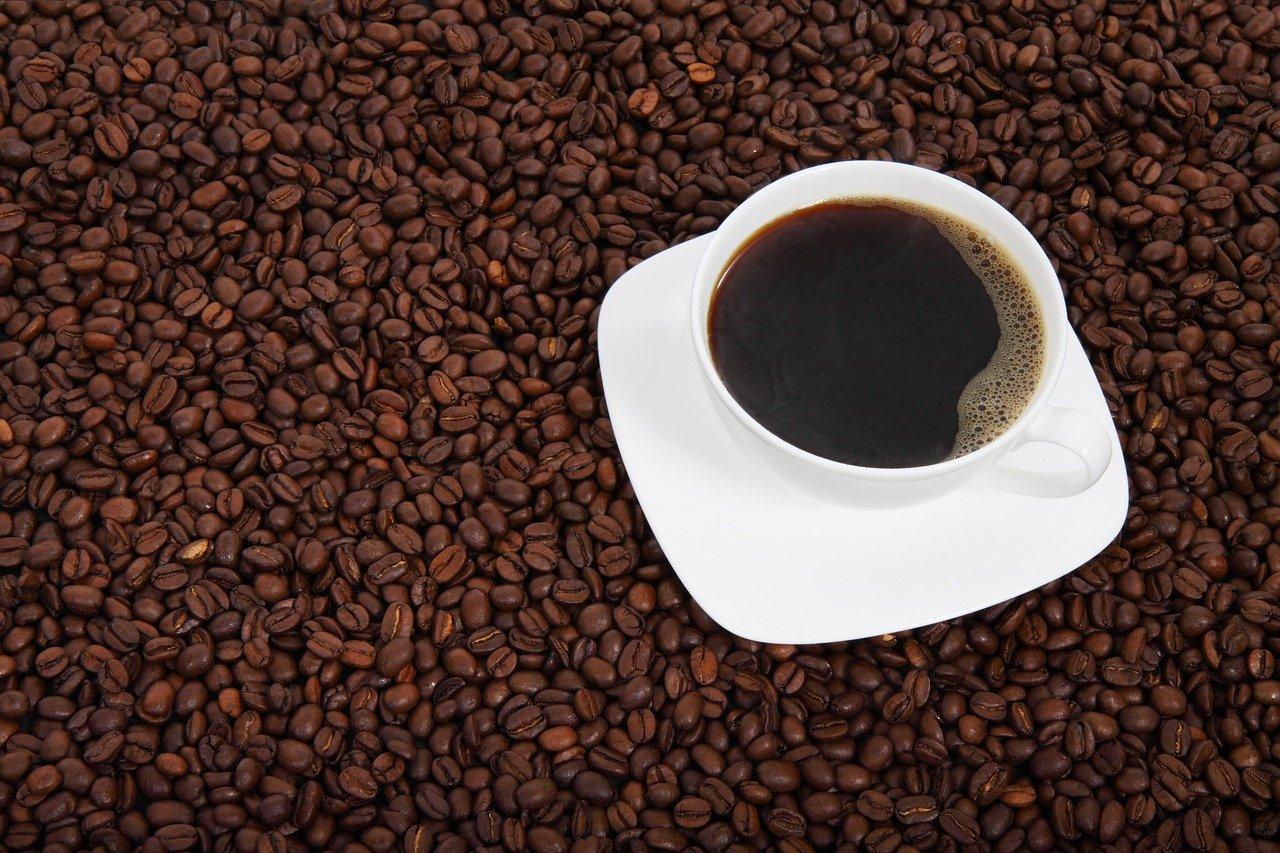 humanidade, coffee, beans, cup-15994.jpg