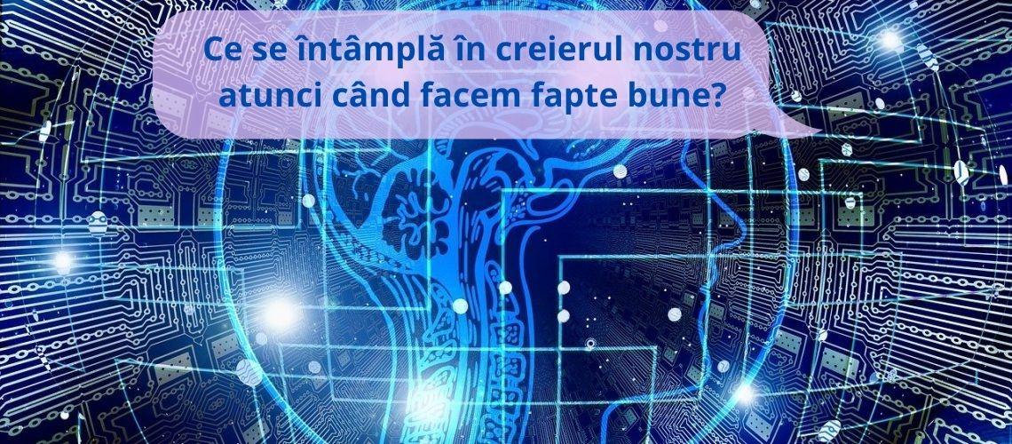 creier, artificial intelligence, brain